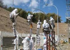 """Fukushima, acqua radioattiva: """"zona morta"""" come a Chernobyl"""