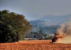 Imu: primi sconti ed esenzioni, tagli per terreni agricoli e coop