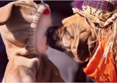 I cani proteggono i neonati dalle malattie respiratorie