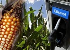 Onu chiede agli Usa di ridurre la produzione di etanolo