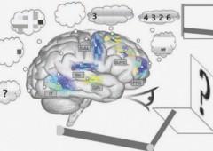 Spaun, il cervello artificiale da 2,5 milioni di neuroni