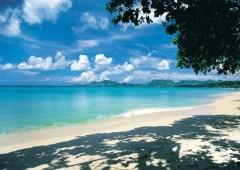 Isole Cayman. Paradiso fiscale farà i nomi