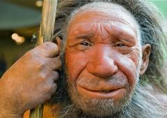 Uomo Neanderthal nel 2013? Scienzato cerca donna per farlo rinascere