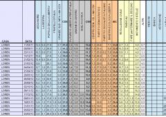 Sondaggi post voto: 5 Stelle in salita al 28,5%, scompare il centro