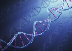 """Dalla Cina: """"Nati i primi bimbi geneticamente modificati"""""""