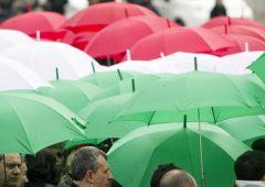 "Germania: ""italiani comprate Btp, patriottismo vi salverà"""