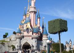 """Disney World: ricchi saltano code """"affittando"""" un disabile"""