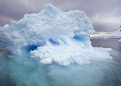 Clima: chi sopravviverà al riscaldamento globale?