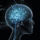 Google e l'intelligenza artificiale: dalla traduzione alle auto elettriche