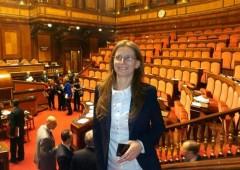 """M5S: """"Trucchi contabili nel bilancio 2013 del Senato"""""""