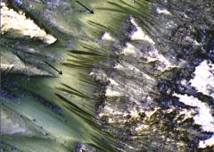 Marte: flussi oscuri confermano presenza di acqua