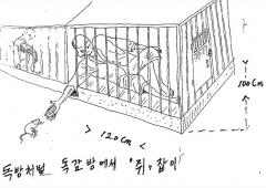 Gulag nordcoreani, le torture nei disegni di un sopravvissuto