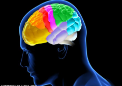 Fumare da adolescenti può portare danni al cervello