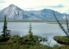 Alaska: successo per petizione che chiede annessione a Russia