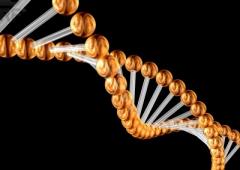 Creato per la prima volta codice genetico artificiale
