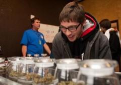 Washington: a ruba la marijuana legale