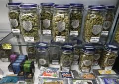 I migliori titoli della marijuana (legale) da comprare adesso