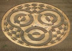 Germania: mistero alieno su nuovi cerchi nel grano