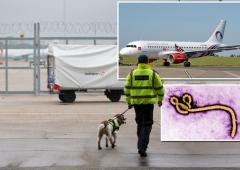 Ebola: terrore all'aeroporto di Londra dopo collasso passeggero