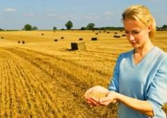 L'agricoltura unico settore che cresce, attira giovani