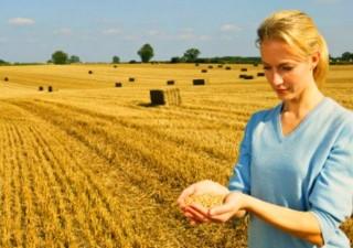 Boom imprenditoria giovanile, agricoltura tra i settori più amati