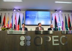 Opec sorprende, alza produzione: petrolio a fondo
