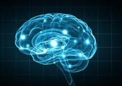 Scienziati: bloccare l'avanzata dell'Alzheimer forse è possibile