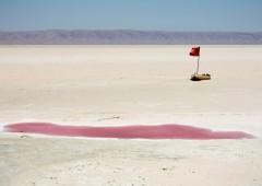 Il mare nel deserto: l'idea di un italiano per dare lavoro a migliaia di persone