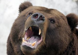 Bufera a Wall Street: Citi taglia target S&P 500