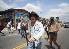 Bayer rilancia su Monsanto. Offerta in contanti record
