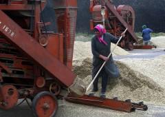 """Russia si prepara al peggio: """"accumulate riserve di cibo"""""""