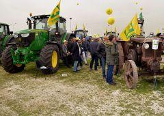 """Made in Italy alimentare: """"tre marchi su quattro"""" a stranieri. Crac grano"""