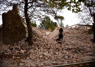 Terremoto, il più violento dal 1980. Polemica su magnitudo 'falsata'