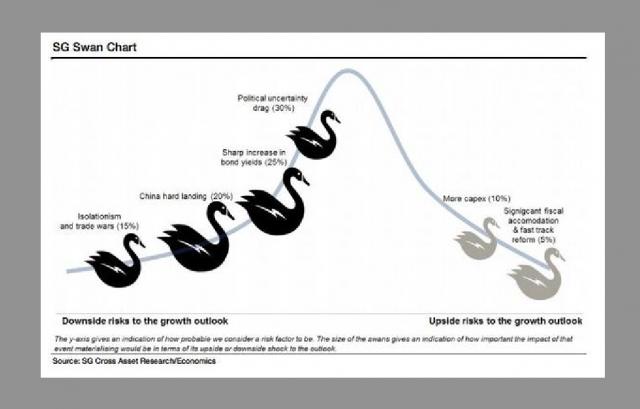 """SocGen: 4 cigni neri e 2 cigni """"positivi"""" per i mercati nel 2017"""