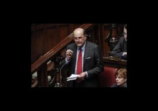 Politica italiana: la disgrazia dei cespugli