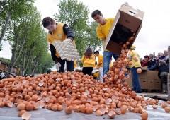 Anche l'Italia è coinvolta nel caso delle uova contaminate