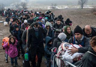 Immigrazione forzata ...