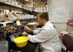 CRISPR CopyFund: il nuovo modo di investire nella tecnologia che sta rivoluzionando la medicina