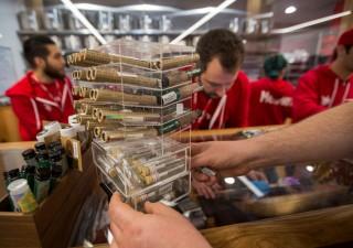 Boom titoli gruppi cannabis in vista della legalizzazione in Canada