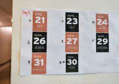Iva, 730, rottamazione: le scadenze fiscali di maggio