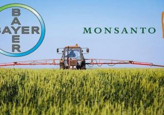 Monsanto, spunta lista segreta di 200 intellettuali contrari al glifosato