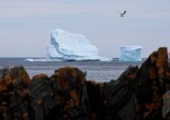"""Leggenda derivati: """"iceberg in vista"""", sfruttare mercato opzioni per evitarlo"""