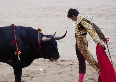 """BofA: """"Il mercato Toro è morto"""""""