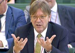 Verhofstadt: o l'Ue cambia o muore di populismo