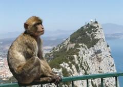 Brexit, nodo Gibilterra potrebbe far saltare l'accordo