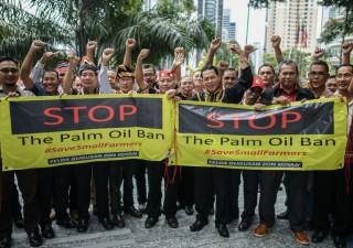 Olio di palma: il bando dell'Ue preoccupa i paesi produttori del sud est asiatico