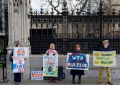 """No Deal Brexit: """"Implementazione regole Wto richiederebbe 7 anni"""""""