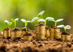 Finanza Green: orientare le scelte per un mondo più sostenibile