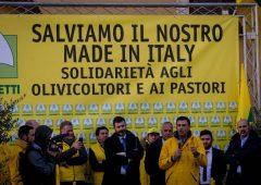 """Proteste latte: fumata nera su accordo, """"72 centesimi insufficienti"""""""