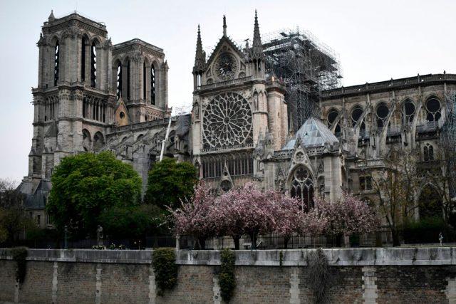La cattedrale di Notre Dame al risveglio